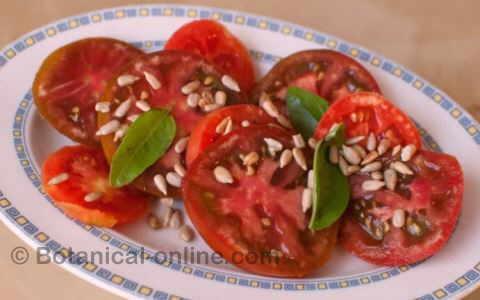 ensalada de tomate con semilals de girasol y albahaca