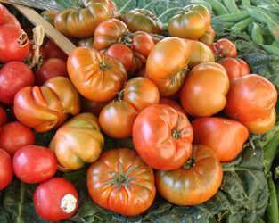 tomates en un mercado