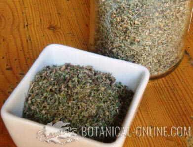 tomillo seco hierba aromatica