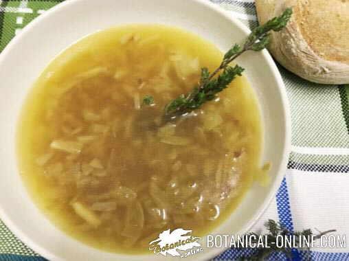 sopa de tomillo