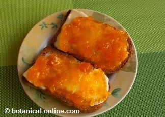 tostadas con mantequilla y mermelada de calabaza