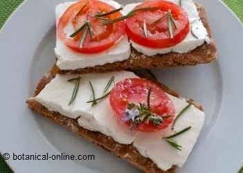 Foto de tostadas con queso fresco y tomate