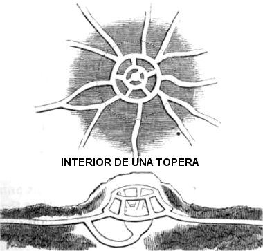 toup-rr