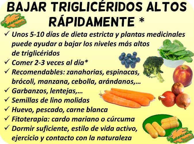 remedios mas efectivos para bajar rapidamente los trigliceridos altos