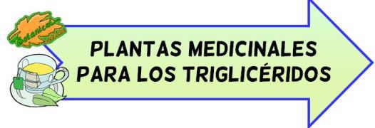 plantas medicinales trigliceridos