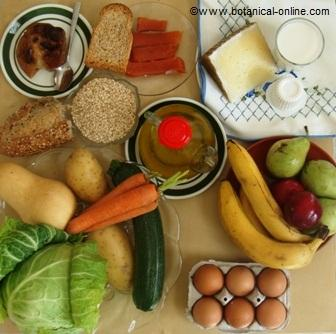 alimentos para el estomago