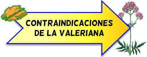 contraindicaciones de la valeriana