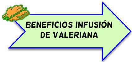 infusion de valeriana