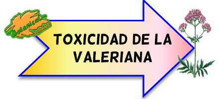 toxicidad de la valeriana