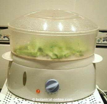 Ventajas de cocinar al vapor for Recipientes para cocinar al vapor
