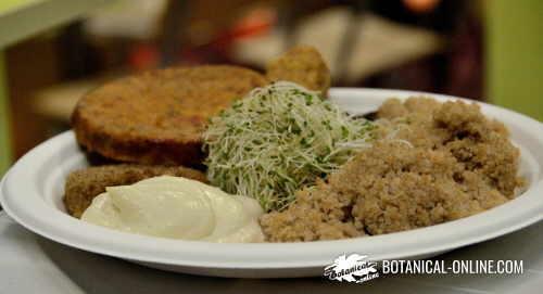 menú vegetal con carne vegetal
