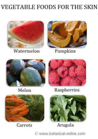 Good foods for the skin