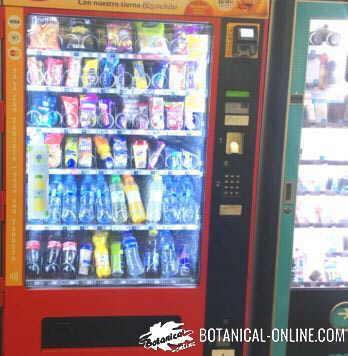máquina de vending de comida rapida fast food