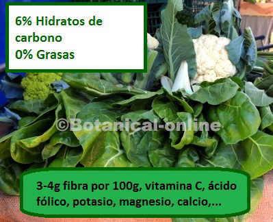 composicion nutricional de las verduras, fibra, azucares