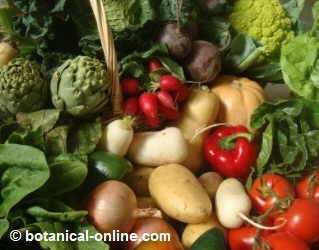 Plant foods against breast cancer