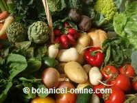 verduras para la vista