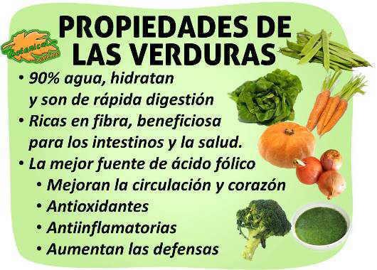 propiedades de las verduras hortalizas y beneficios