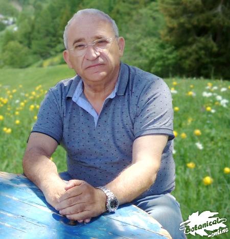 Vicente Martínez Centelles