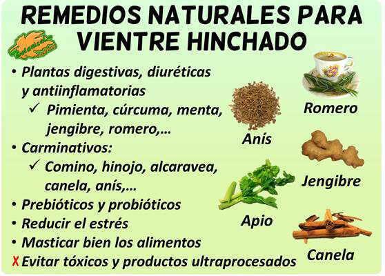 remedios naturales con plantas para la barriga hinchada, distensión abdominal y tener vientre plano
