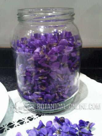 jarabe de violetas casero remedio