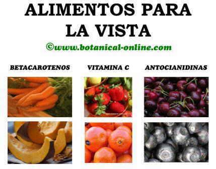 Alimentos para la vista