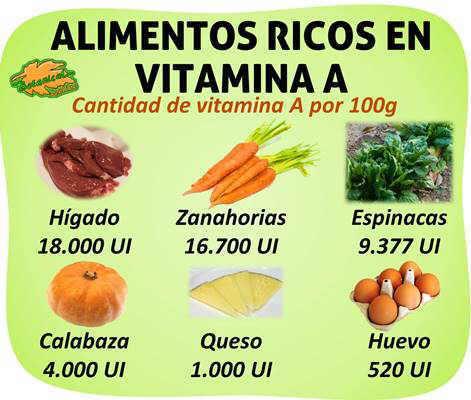 Alimentos ricos en vitamina a for Comidas con d