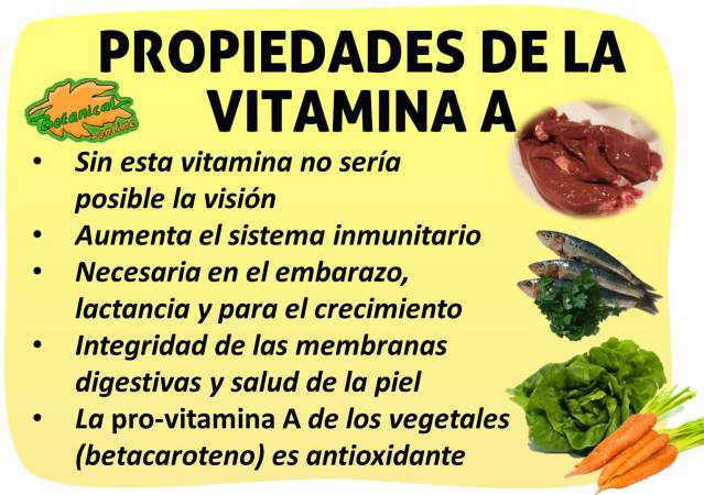 propiedades medicinales de la vitamina a y alimentos ricos en betacarotenos