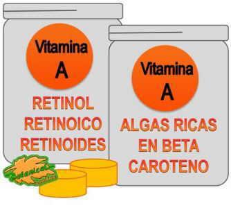 tipos suplementos de vitamina A