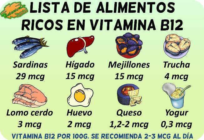 vitamina b12 cobalamina alimentos ricos cantidad
