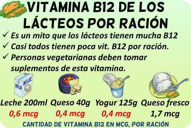 cantidad vitamina b12 lacteos