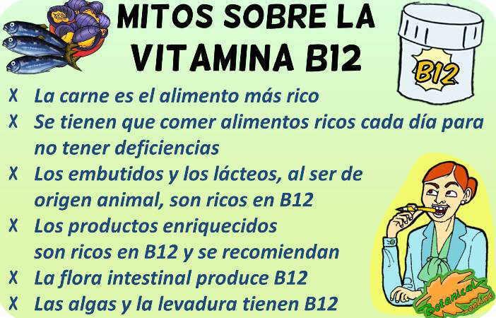 mitos vitamina b12 vegetarianos omnivoros