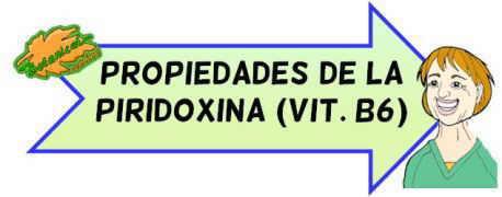 propiedades piridoxina b6