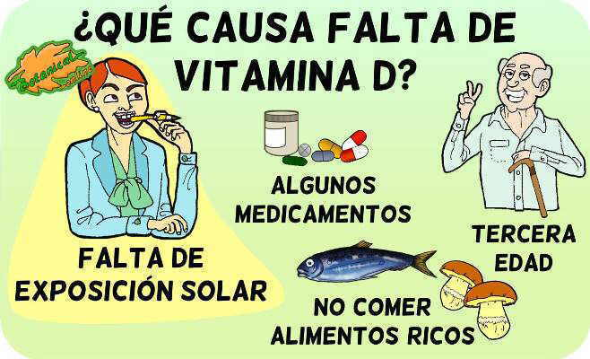 vitamina d causas deficit falta vitamina