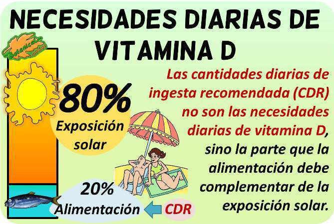 vitamina d necesidades diarias ingesta