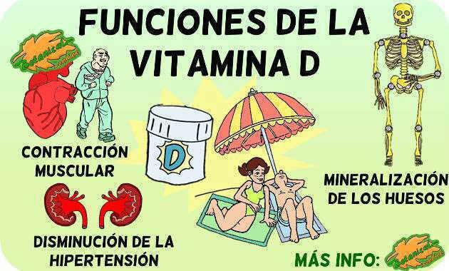 vitamina d funciones propiedades beneficios de tomar el sol