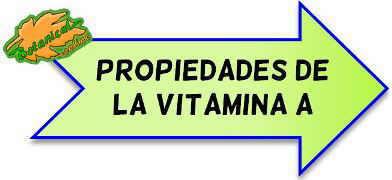 vitamina a propiedades