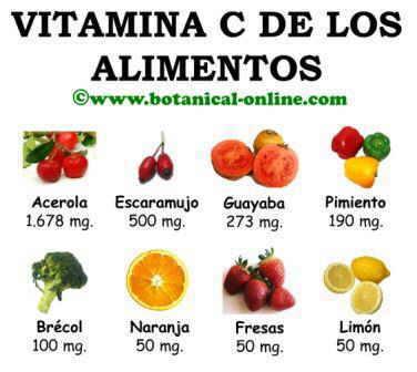 Fuentes de vitamina c, alimentos con vitamina c