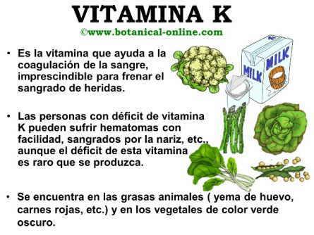 funcion de la vitamina k filoquinona