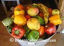 frutas para la malaria