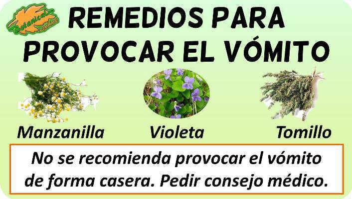 provocar vomito rapido plantas medicinales remedios suplementos tratamiento natural