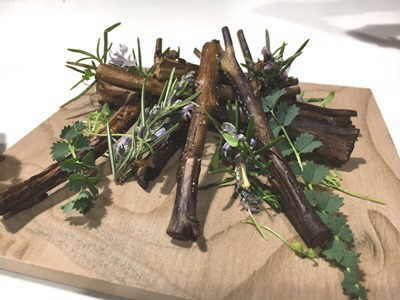 plato plantas silvestres comestibles