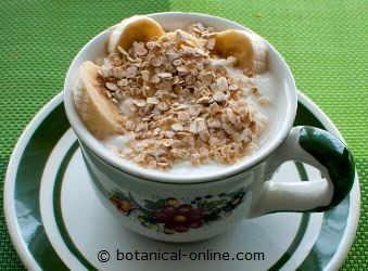 Foto de yogur con nueces y avena