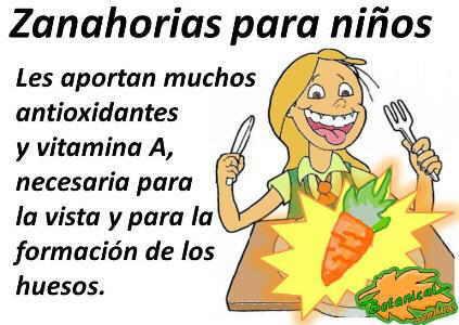 zanahorias saludables para niños