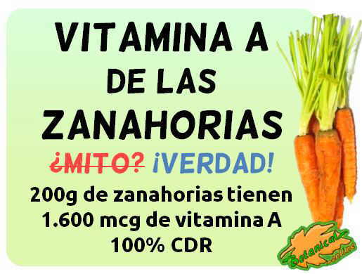 cantidad de vitamina A de las zanahorias