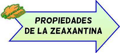 propiedades zeaxantina