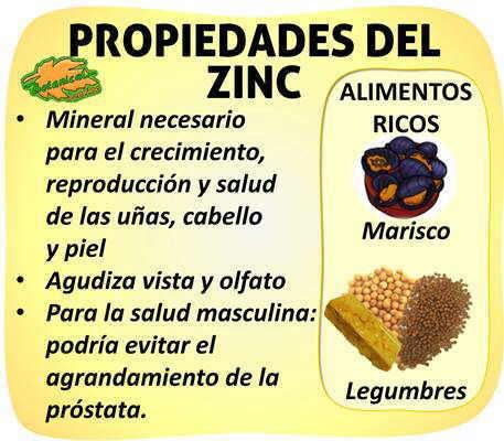 propiedades y beneficios del zinc y alimentos ricos en este mineral
