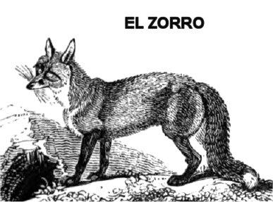 Cmo caza el Lobo